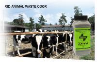 SMELLEZE Natural Poop Smell Removal Deodorizer: 2 lb. Gran. Removes Fecal Stink