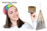 SMELLEZE Reusable Paint Odor Removal Pouch: X Large
